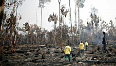 UN: World failing to meet all targets to save nature
