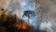 Scientists: Fires spike in Brazil's...