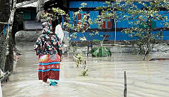 Torrential rain maroons thousands of families in Bagerhat