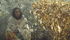 Short films on social injustice and...