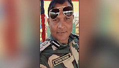 BSF commandant released on bail in cow smuggling case