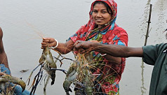 Study: Female members of coastal fishing...