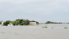 Higher-magnitude flood frequency increases in Bangladesh