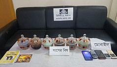 Snake venom worth 75C seized from 6 people
