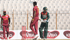 West Indies 47 for 3 after 13 overs