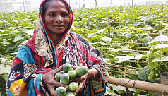 Alternative Farming: How Kurigram women...