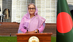 PM Hasina: Trying our best to bring...