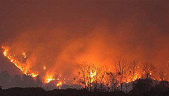 Japan wildfire rages for 5th day, more...