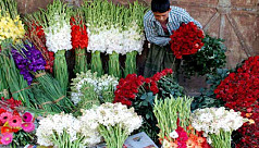 Godkhali flower traders fret over declining prices