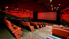 Cinema hall owners get a lifeline from...