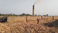 Illegal brick kilns spell doom for ideal agricultural village