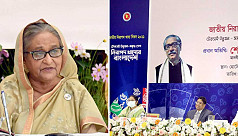 PM Hasina: Curb food adulteration with an iron hand