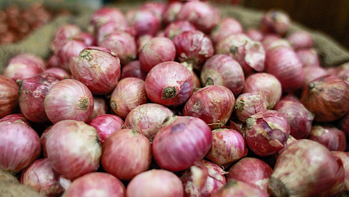 India looking for ways to meet Bangladesh's onion needs following protest from Dhaka